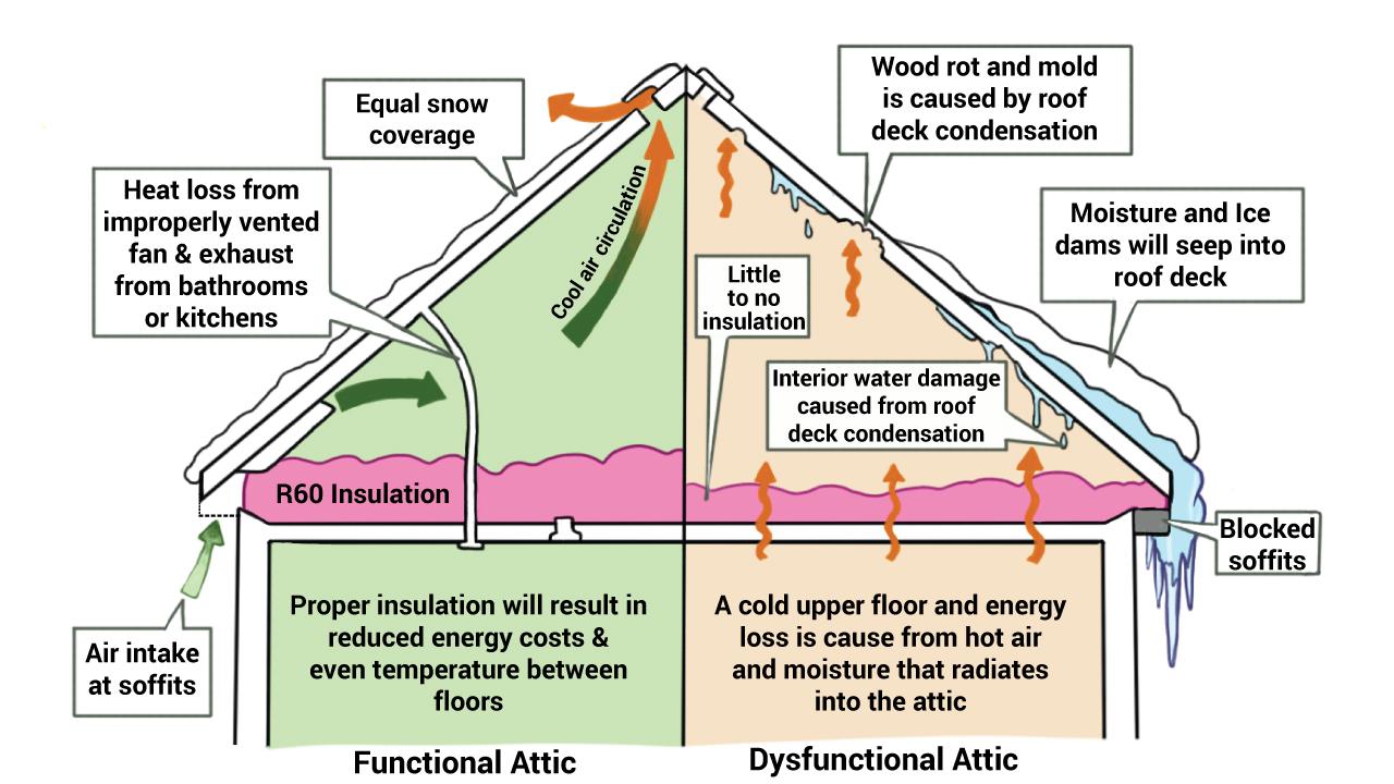 Attic Insulation Diagram Am Insulation Solutions